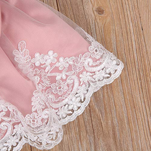 Baby Girl Princess Dress Infant Gown Big Bow Lace Wedding
