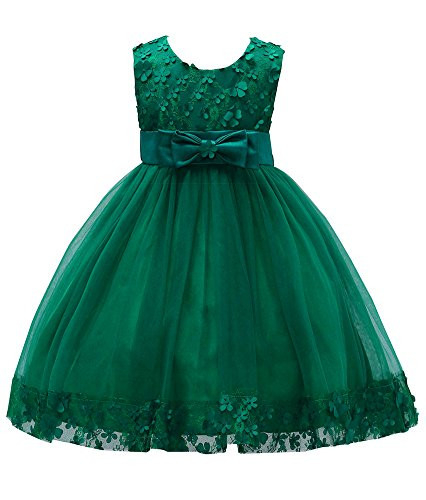 Flower Girl Lace Dresses Pageant Party Baby Sleeveless