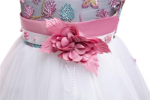 Toddler Dress Birthday Pageant Party Event Baby Prom Tutu
