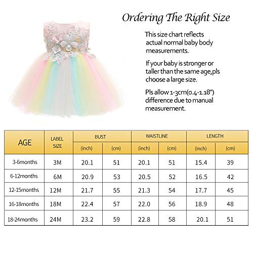 Xangirl Baby Girl Party Dresses, Rainbow 3D Embroidery